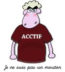 acctif-mouton-200